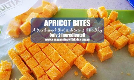 Apricot Bites – Only 2 ingredients!